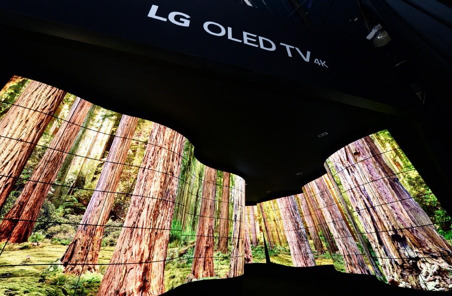 LG-OLED-Canyon_2.jpg