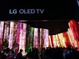 LG OLED Canyon_5
