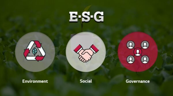 An illustration defining the acronym ESG: Environment, Social and Governance.
