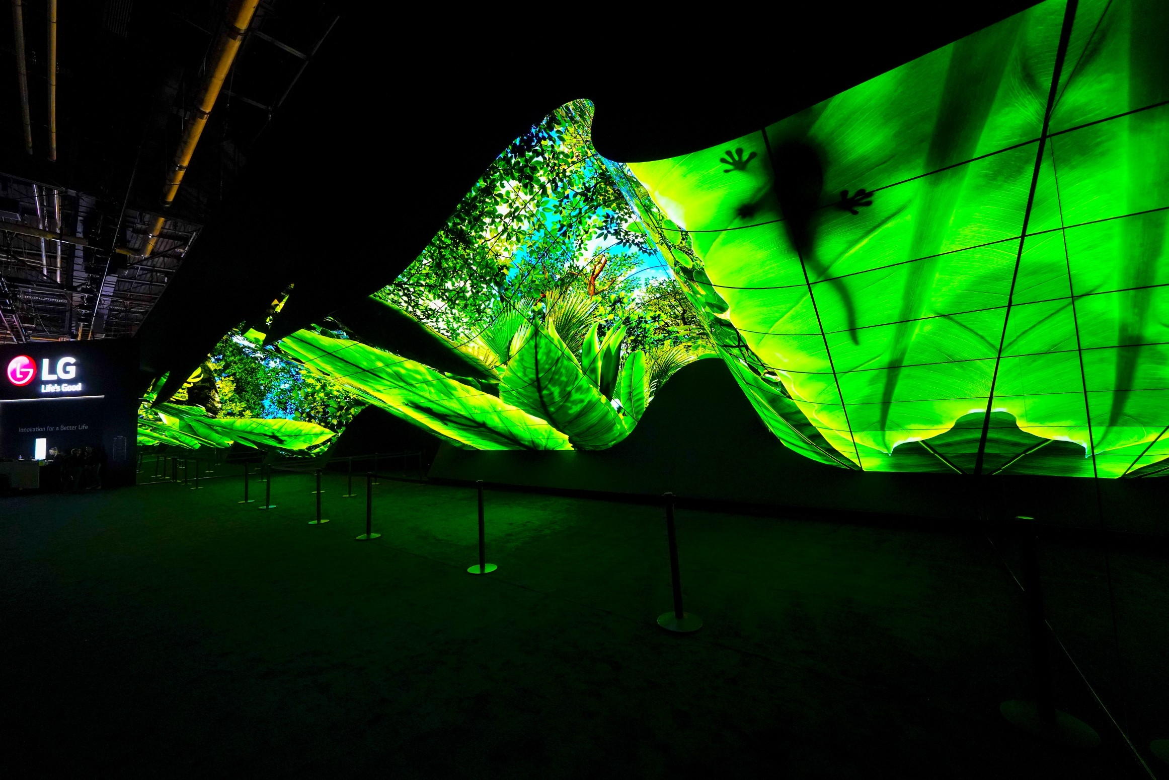 A view-angle view of LG OLED Wave as it delivers the vibrant natural colors of a rainforest at CES 2020