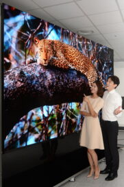 A man and woman marvel at the extraordinary picture quality of the new Micro LED signage solution, LG MAGNIT, which is displaying a beautiful and colorful leopard lying on a tree