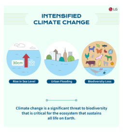 A page stating that rising sea levels, urban flooding and major biodiversity loss can be serious consequences of intensified climate change.