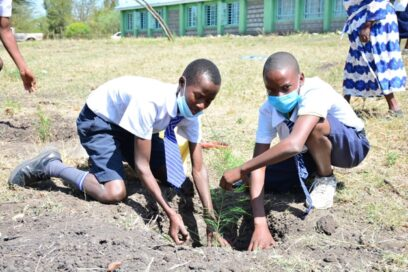 Two students planting trees to help improve their school ground.