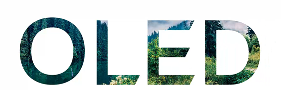 The LG 'OLED' logo made from a photo of a rainforest.